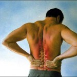 best virginia beach chiropractor